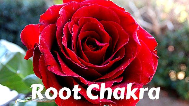 Root Chakra | Muladhara