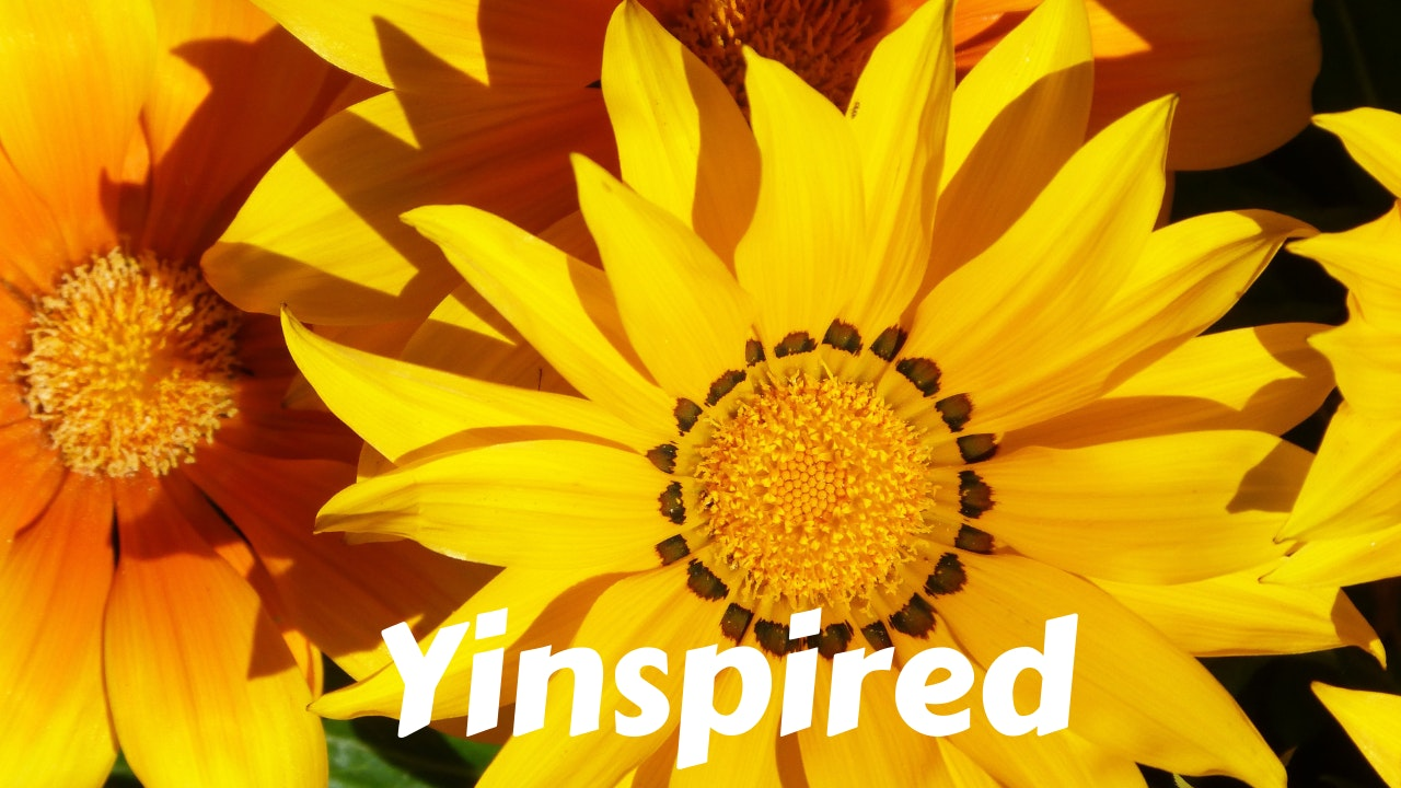 Yinspired Yoga - Yin Inspired Yoga Fusion