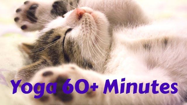 Yoga 60+ Minutes