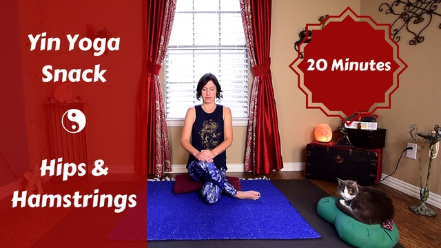Yin Yoga Snack for Hips & Hamstrings
