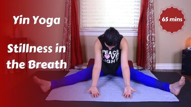 Yin Yoga | Stillness in the Breath