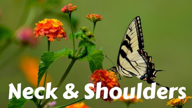 Yoga for Neck, Shoulders & Upper Back