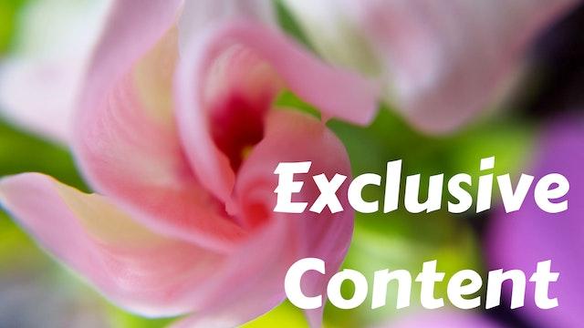 Exclusive Member Content