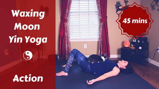 Waxing Moon Yin Yoga | Action & Expression