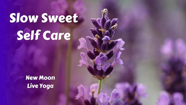 New Moon Live Yoga | Slow Sweet Self Care