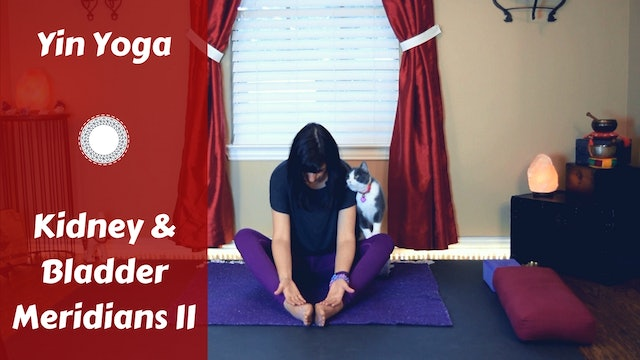 Yin Yoga for Kidney/Bladder Meridians