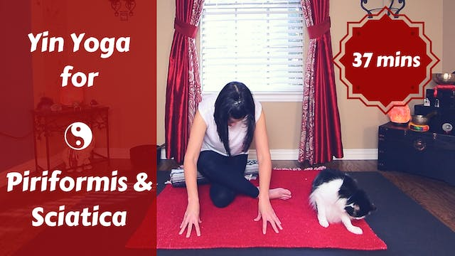 Yin Yoga for Piriformis & Sciatica Pa...