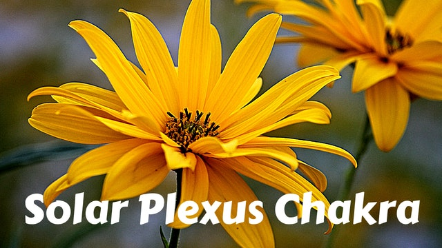 Solar Plexus Chakra | Manipura