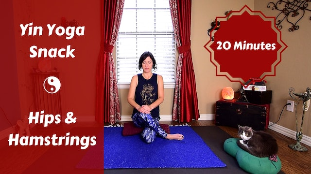 Yin Yoga Snack for Hips & Hamstrings