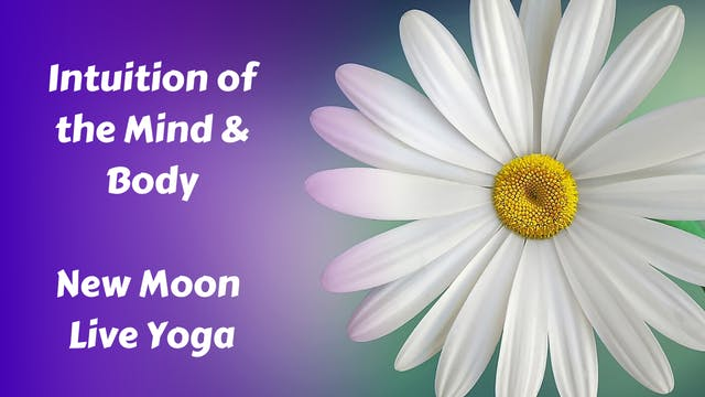 Intuition of the Mind & Body | New Moon Restorative Yoga