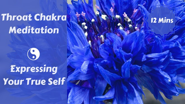 Throat Chakra Meditation | Expressing Your Truth