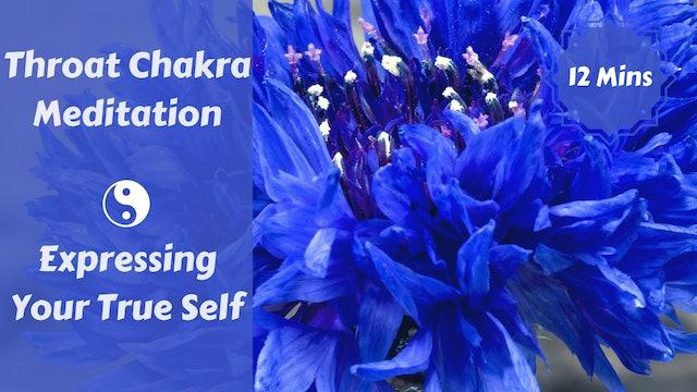 Throat Chakra Meditation   Expressing Your Truth