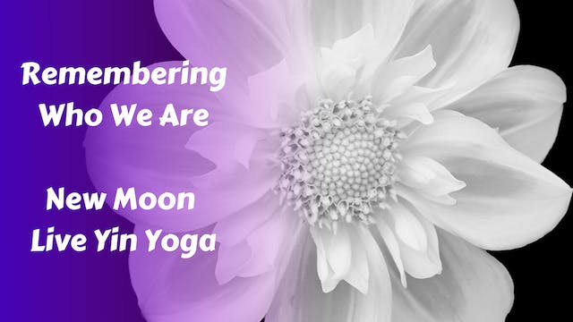 Remembering Who We Are | New Moon Live Yin Yoga