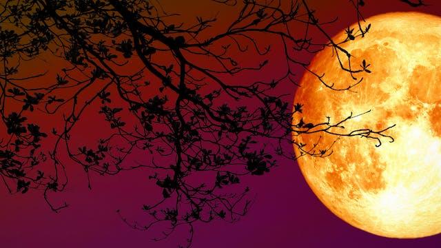 Equinox & Lunar Practices