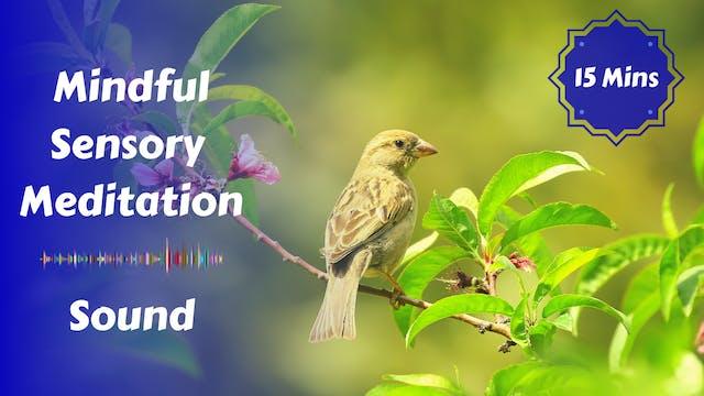 Mindful Sensory Meditation | Sound