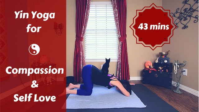Coming Home:  Yin Yoga for Compassion & Self Love