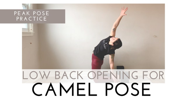 Low Back Opening for Camel Pose   Peak Pose Practice