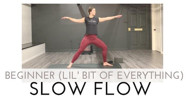 Beginner Slow Flow (A Little Bit of Everything!)