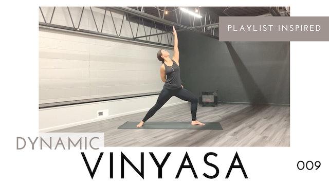 Dynamic Vinyasa 009 | Minimal Cues, Balance, and Holds