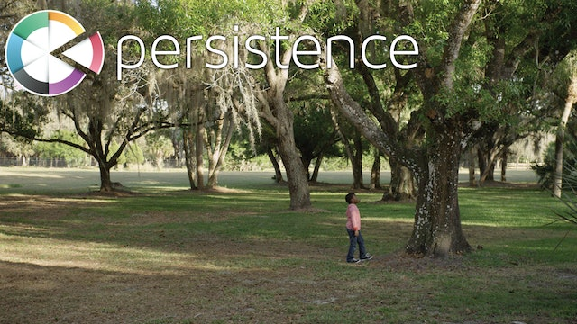5 PERSISTENCE cinematic video