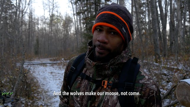 Kingdom Wild - Season 1 Episode 3