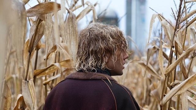Tom la fermă / Tom à la ferme (2013)