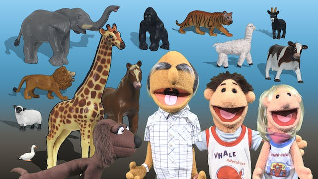 Timmy Uppet's Awesome Animals