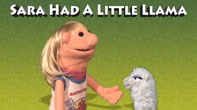 Sara Had A Little Llama