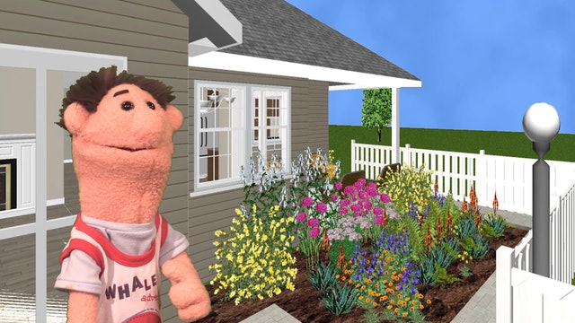 Timmy's New House