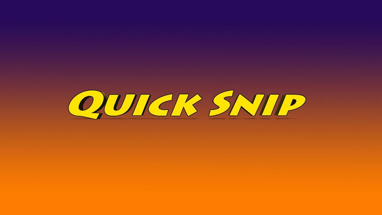 Quick Snips