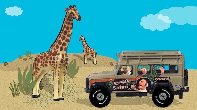 Grandpas Safari