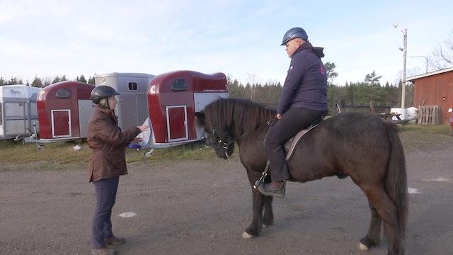 Hjälp, min häst snubblar!