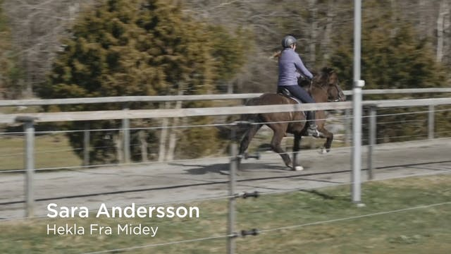 Sara Andersson  Hekla Fra Midey