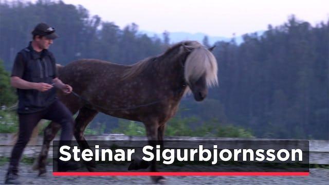 Steinar Sigurbjornsson