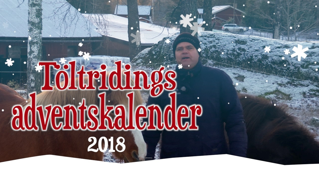 Töltridings adventskalender 2018