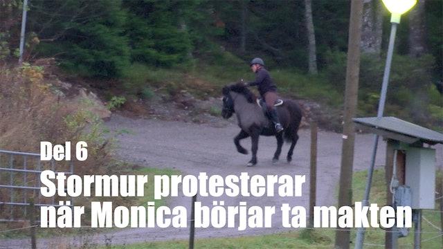 14 nov -17: Stormur protesterar när Monica börjar ta makten