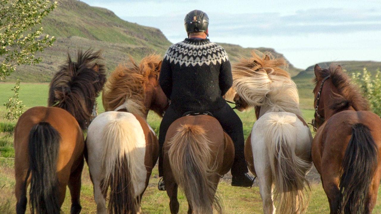 Rida med handhäst
