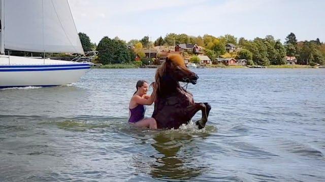 Bada med hästen