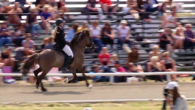 Ryttare och hästar i A-final Femgång,