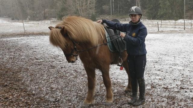 27 februari -17: Landslagsryttaren tipsar om hur du rider din spända häst.