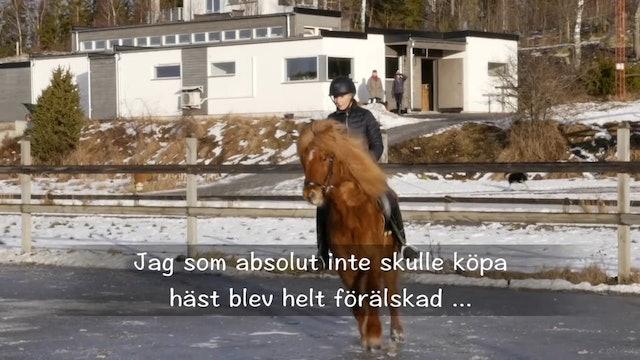 17 januari - 17: Att köpa häst, Frasse är våran.