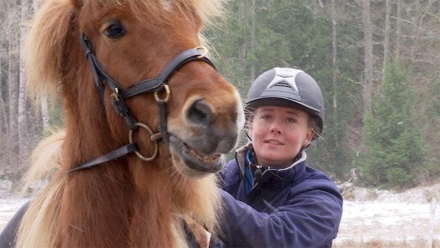 28 feb -17: Helena Kroghen Adalsteinsdottir rider Frasse.