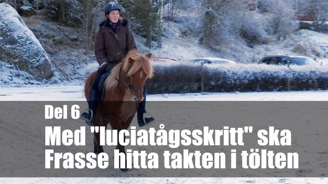 12 jan -18: Med luciatågsskritt ska Frasse hitta takten i tölten