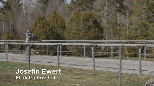 Josefin Ewert  Ellidi frá Fosshofi