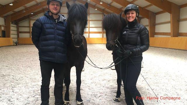 Icelandic Horse Expo spring 2019 part 3