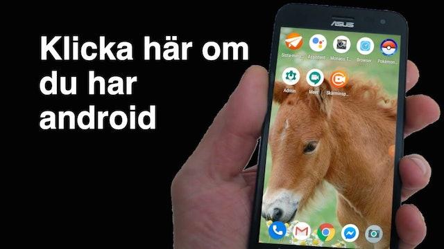 App på android