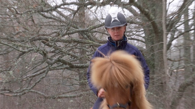 27 februari -17:  Håll ridningen enkel tills hästen är redo för mer.