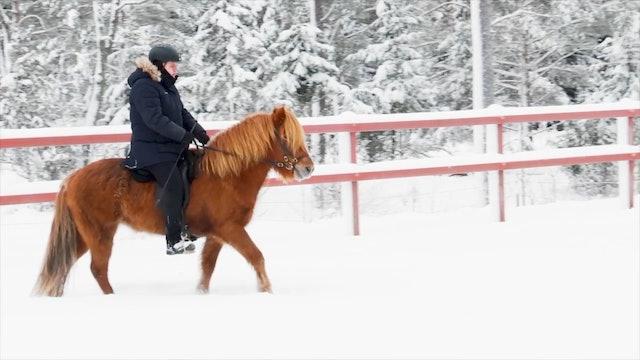 Del 5: Om du är rolig ger du hästen arbetsglädje.