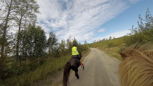 Distansritt 2019, Hudiksvall