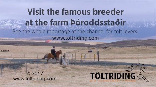 Þóroddsstaðir  trailer
